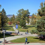 Campus in the Summer