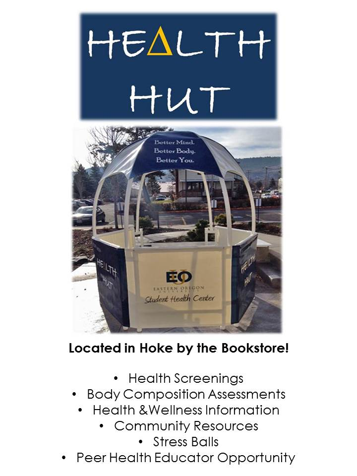 health hut flyer