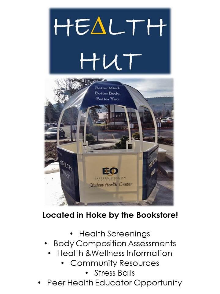 health hut flyer