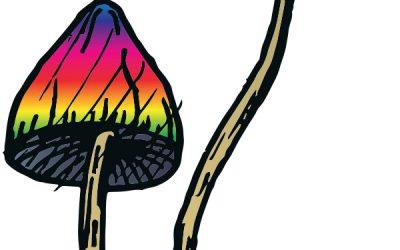 rainbow mushrooms