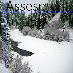 logo Assessment