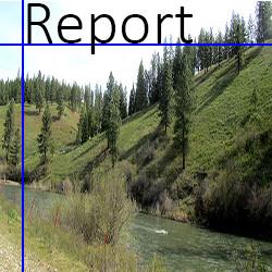 logo report