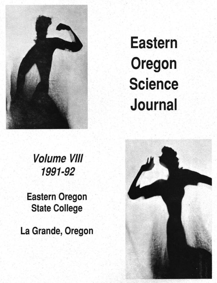 VIII 1991-1992