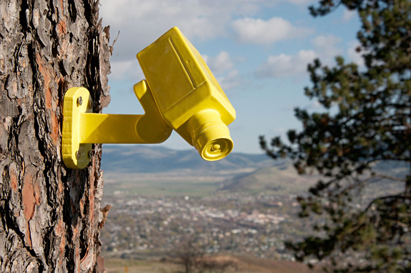 """Trevor Durr, """"Insecurity Cameras,"""" ceramic, 8.5"""" x 3.5"""" x 3.5"""" (2013)."""