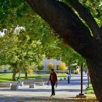 EOU celebrates Arbor Day