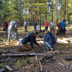 Charter Ranger District internships
