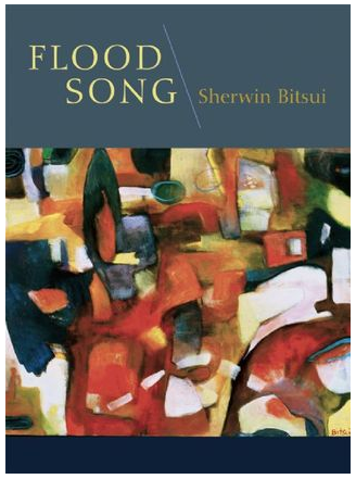 """Flood Song"" by Sherwin Bitsui"