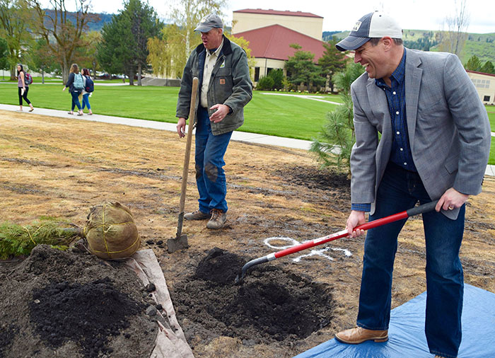 EOU President Tom Insko pitches in with planting a young Douglas fir – Oregon's state tree – on National Arbor Day, April 28. Campus Grounds Coordinator David Yoder, left, and EOU's Tree Advisory Committee coordinated the campus celebration.