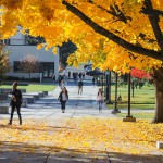 fall on campus 2017