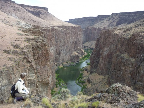 Wild Owyhees canyon view