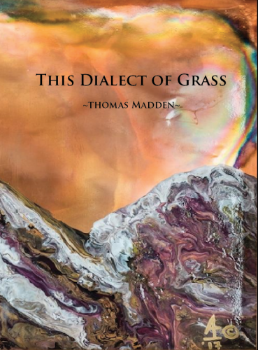 This Dialect of Grass cover