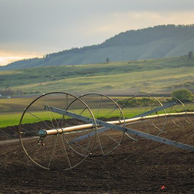 Agriculture Entrepreneurship degree designed for next generation farmers